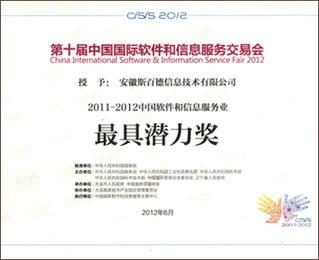 中国软件和信息服务
