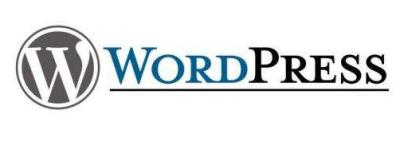 新手站长搭建WordPress网站几大注意事项