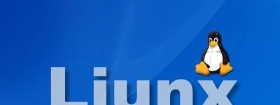 Linux作为服务器操作系统的优点和缺点