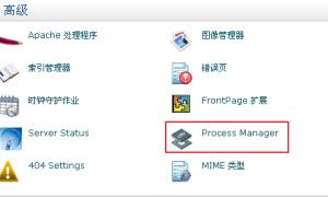 HostMonster等cPanel主机Process Manager介绍