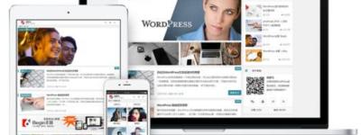 WordPress免费和付费主题的区别 应该怎么选?