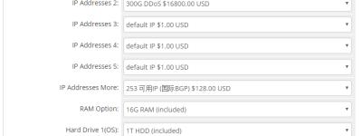 RAKsmart E3-1230美国服务器性能评测