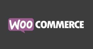 WooCommerce:全球受欢迎电子商务 跨境电商解决方案