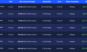 RackNerd洛杉矶Sharktech推出DDoS Protected KVM VPS
