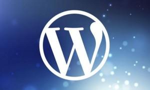 优化WordPress主机磁盘空间的七点小建议