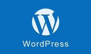 从WordCamp欧洲2020峰会看看WordPress的现状与未来
