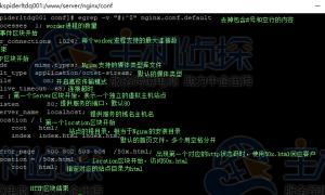 Nginx配置文件详解:新手必看