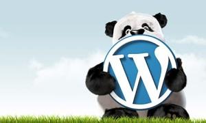 WordPress无法在线安装主题和插件问题方法