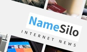 NameSilo发布了2020年第二季度业绩 收入同比增长9.1%