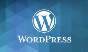 WordPress建站教程:文章发布时怎么添加确认对话框按钮
