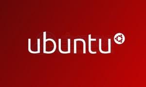 RAKsmart服务器Ubuntu配置单个IP与整段IP教程