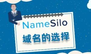 NameSilo:域名选择的主要原则有哪些