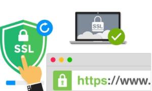 GeoTrust OV企业型SSL证书申请指南