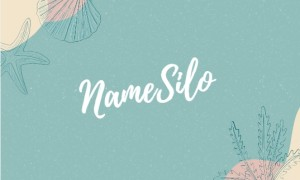 NameSilo优惠域名汇总 .com域名注册仅需6.99美元一年