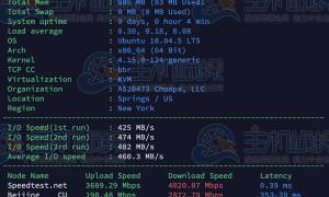 (补)Vultr测评:法国巴黎机房下载速度/路由跟踪测试