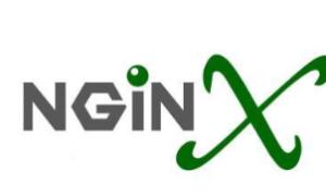 Nginx使用多域名SSL证书配置域名的教程