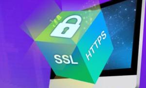 IIS服务器多域名SSL证书绑定443端口的方法