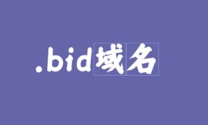 .bid域名代表什么意思