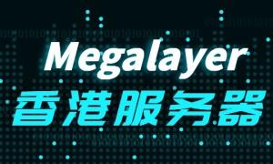 Megalayer:如何选择好用的香港服务器