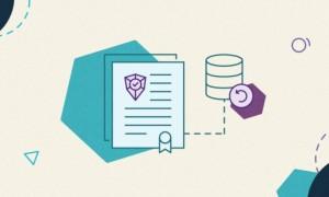 SiteGround数据安全服务更新:新增不同数据中心备份存储功能
