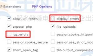 Hostinger主机教程:如何在hPanel中打开PHP错误消息
