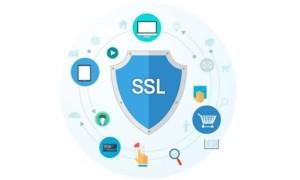 多域名SSL证书最多可保护多少个域名?