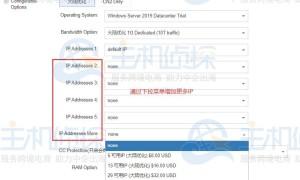 海外服务器IP怎么添加 RAKsmart海外服务器添加IP个数的方法