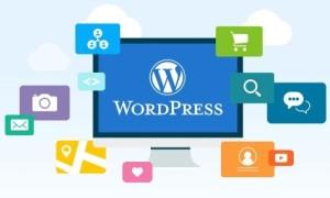 WordPress建站教程:如何给文章添加排序选项