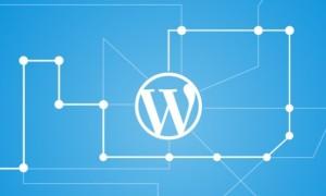 WordPress如何关闭30天自动清理回收站功能