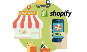 Shopify网站自定义查看销售报告的方法
