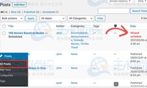 WordPress建站教程:站内计划发布出现错误解决方法
