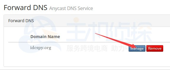 BudgetVM账户申请DNS服务教程