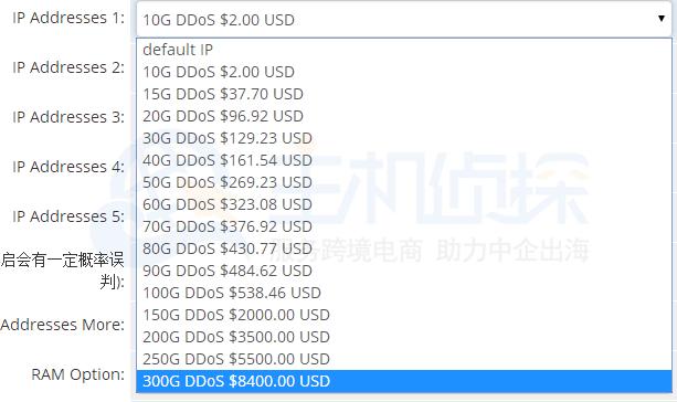 RAKsmart DDoS价格表