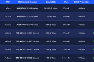 RackNerd DDoS Protected KVM VPS方案