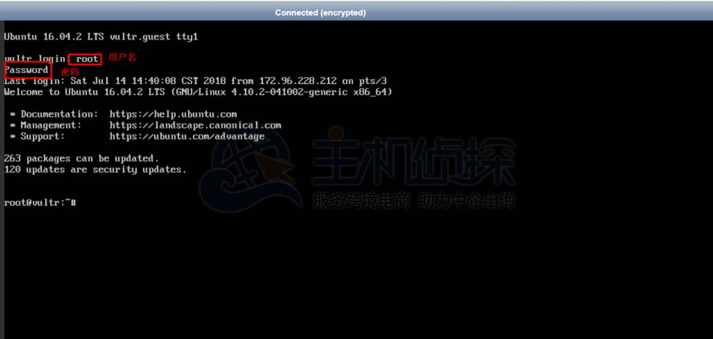 Vultr在线SSH界面