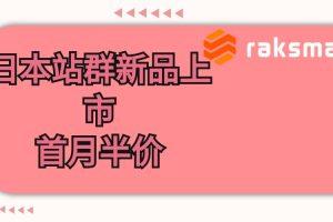 RAKsmart站群服务器