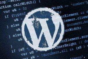 WordPress小插件