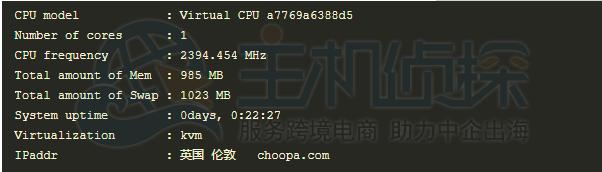 Vultr的CPU信息测试