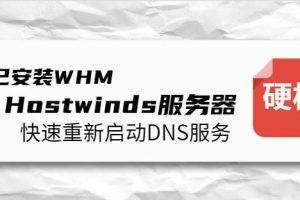 已安装WHM的Hostwinds服务器如何快速重新启动DNS服务
