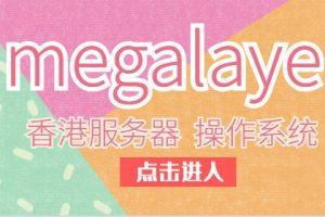 megalayer香港服务器操作系统的选择