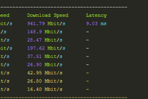 RAKsmart L5630上传下载速度