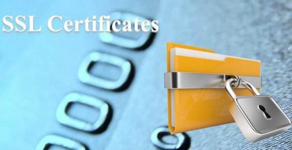 RapidSSL证书的类型及优势