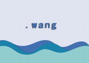 wang域名注册