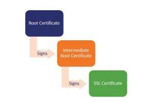 SSL / TLS证书