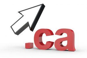 ca域名注册