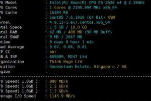 OneVPS新加坡硬件测试