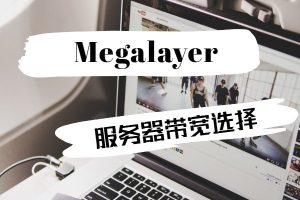 megalayer服务器带宽选择