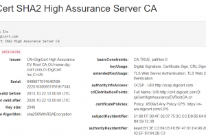 DigiCert SHA2 High Assurance Server CA