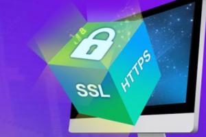 IIS服务器配置多域名SSL证书