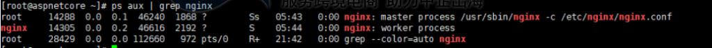 nginx进程运行状态